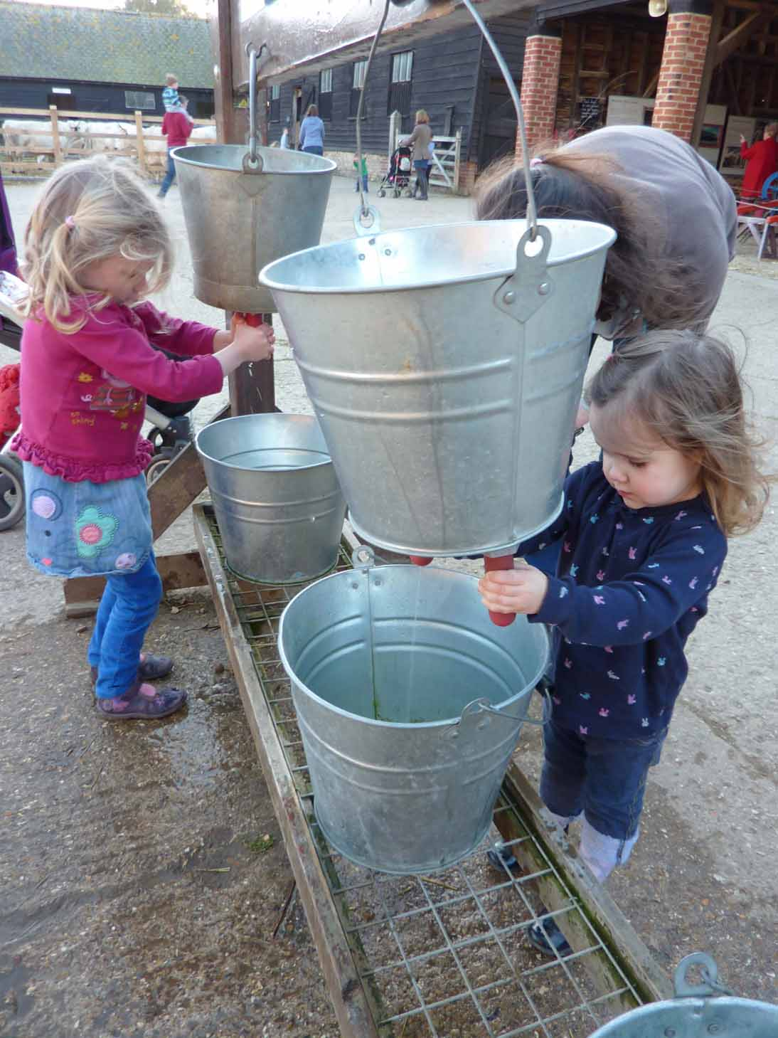 Harriett and Heidi try their hands at milking lr